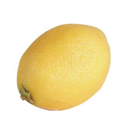 Artificial Fruit Lemon