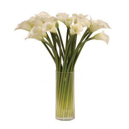 White Calla Lilies in Glass Column Vase