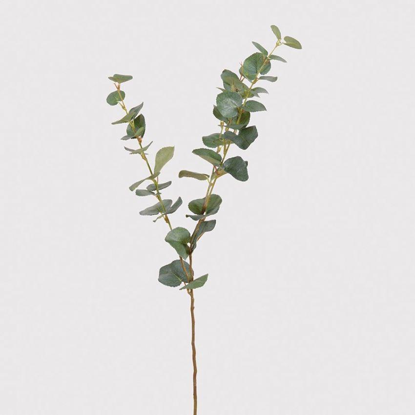 Natural Eucalyptus Spray Flower