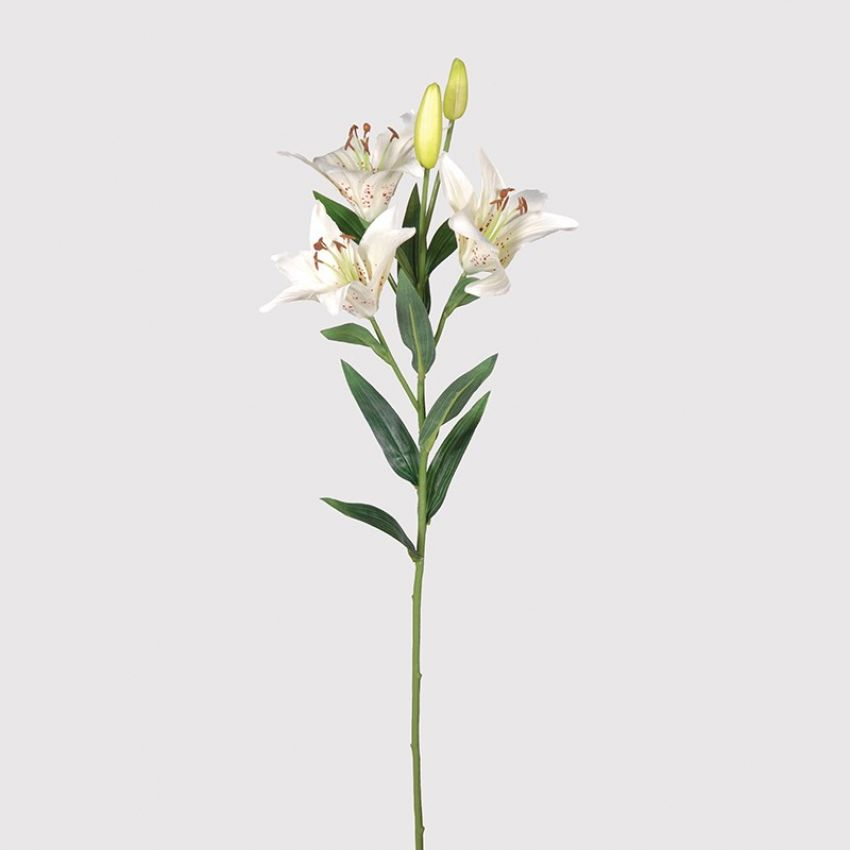 Cream Tiger Lily Spray Flower