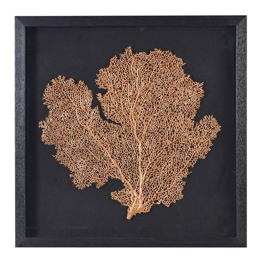 Framed Sea Leaf/Tree Pictures