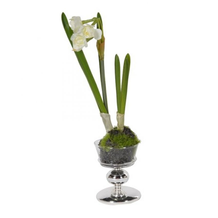"11"" White Flower In Glass"