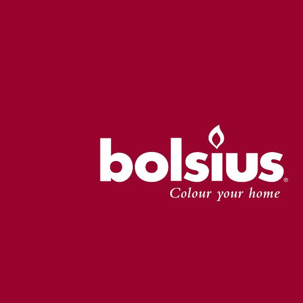 Bolsius logo image